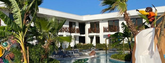 Assos Barbarossa Hotel is one of Locais curtidos por Sinan.