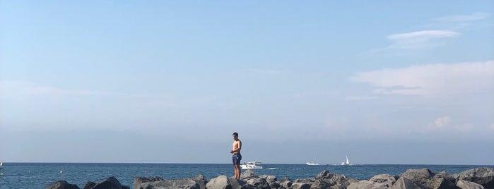 La Scogliera Beach is one of Ischia.
