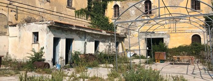 Ex Casa Di Pena is one of Procida.