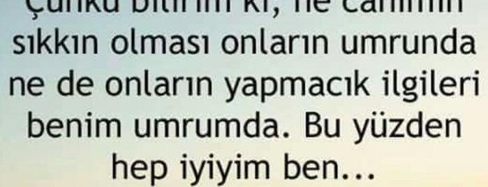 Türkiye İş Bankası Genel Müdürlük is one of alev.