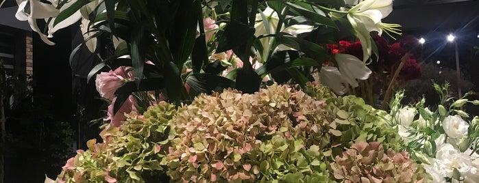 Botanik Garden Butik is one of Tempat yang Disukai Feyza.