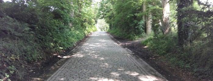 Taaienberg is one of Belgium / Events / Ronde van Vlaanderen 2019.