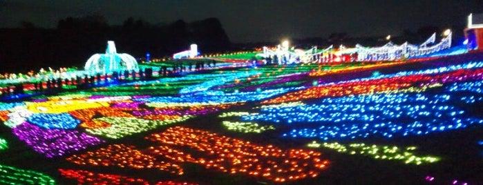 東京ドイツ村 is one of 日本夜景遺産.