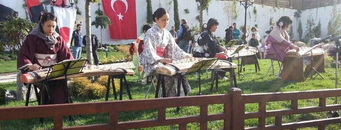 Atsushi Miyazaki Parkı is one of Locais curtidos por Bengü Deliktaş.