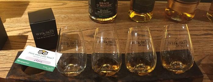 Irish Whiskey Museum is one of Selin Gamze Sıla.