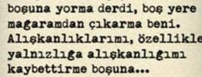 Sevgi Yolu is one of Posti che sono piaciuti a BuRcak.