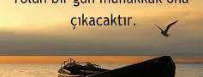 Meyra Kafe Cihangir is one of istanbul.
