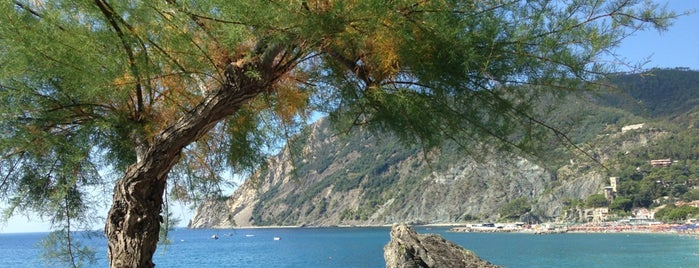 Parco Nazionale delle Cinque Terre is one of Backpacking Italy 2015.
