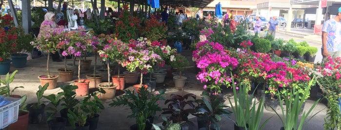 Pasar Bunga Gadong is one of Locais curtidos por S.