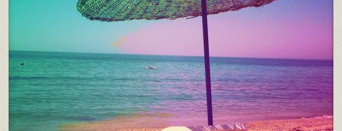Diamond Sand Beach & Cafe is one of Ozlem 님이 좋아한 장소.