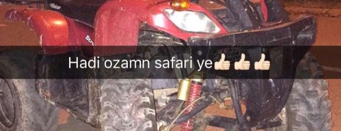 Filya Mesire Yeri is one of Orte, die Kayıhan gefallen.