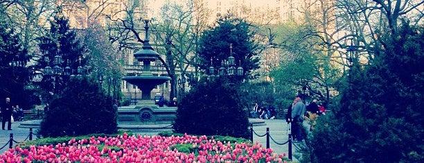Millenium Park is one of NewYork been2.