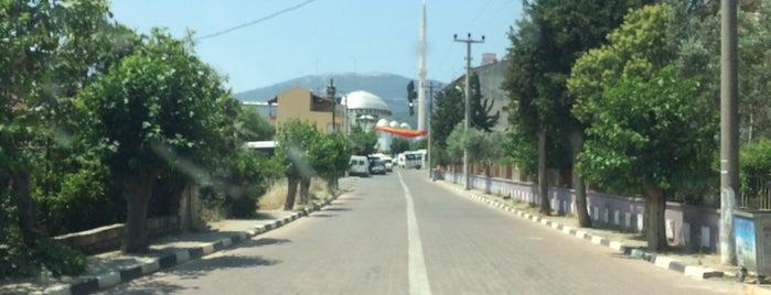Sancaklı Bozköy is one of Izzet'in Beğendiği Mekanlar.