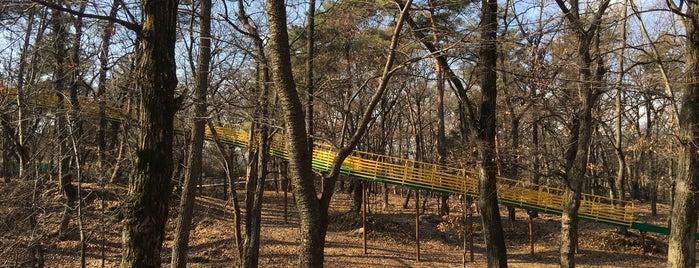 山梨県森林公園 金川の森 is one of Ktさんのお気に入りスポット.