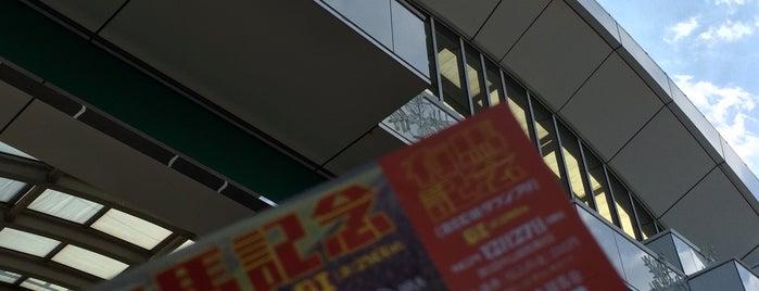 中山競馬場 is one of Ktさんのお気に入りスポット.