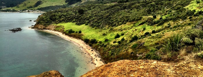 Arai Te Uru Recreational Reserve is one of Nuova Zelanda.