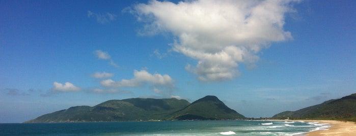 Praia do Morro das Pedras is one of Praias que conheço.