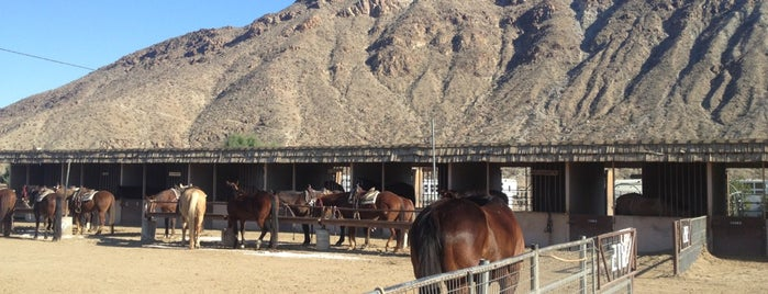 Smoke Tree Stables is one of Desert Destinations.