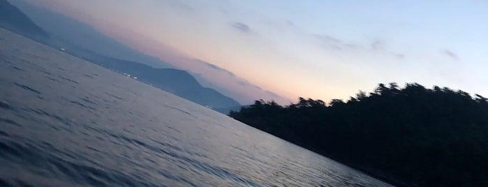 Camelya Adası is one of Orte, die didem gefallen.