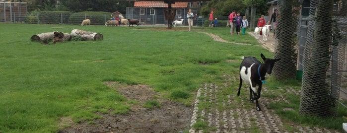 Eetbaar Park is one of Lieux qui ont plu à Wilbert.