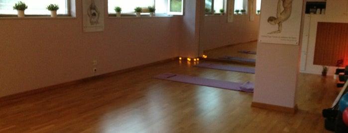 Yoga Academy Etiler is one of Lieux qui ont plu à Cem.