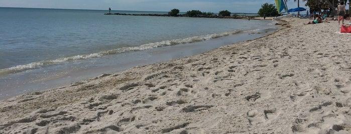 Higgs Memorial Beach is one of สถานที่ที่ Chris ถูกใจ.