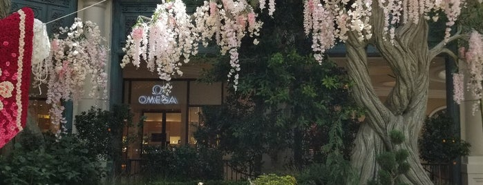 Bellagio Conservatory & Botanical Gardens is one of Steve's Liked Places.