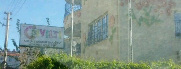 Cıvıltı Çocuk Evi is one of Tempat yang Disukai Ali.