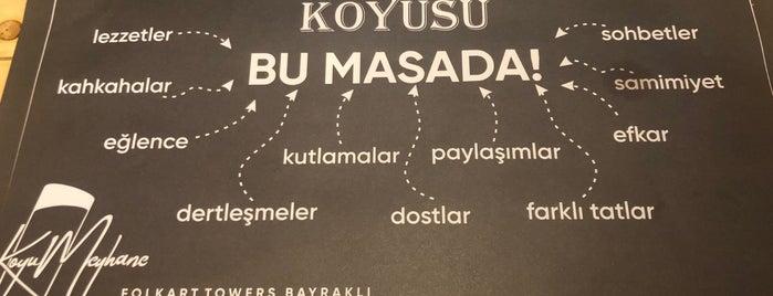 Koyu Meyhane is one of MEYHANELER.