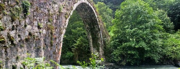 Koboş Köprüsü is one of RİZE.