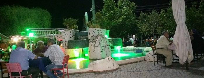 Ata Demirer Eyvah Eyvah Parkı is one of Bayram.