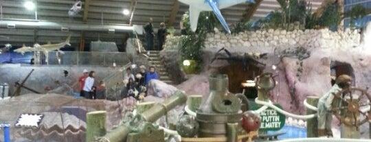 Old Pro Indoor/Outdoor Golf Dinosaur/Undersea is one of Orte, die Chrissy gefallen.