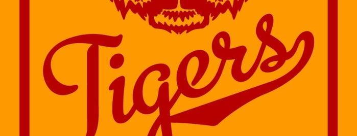 Arcade Tigers is one of Arcade Tigers Eğlence Merkezi.