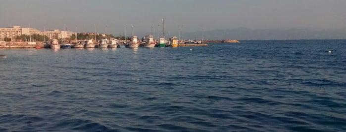 Güre dolunay cafe is one of balıkesir.