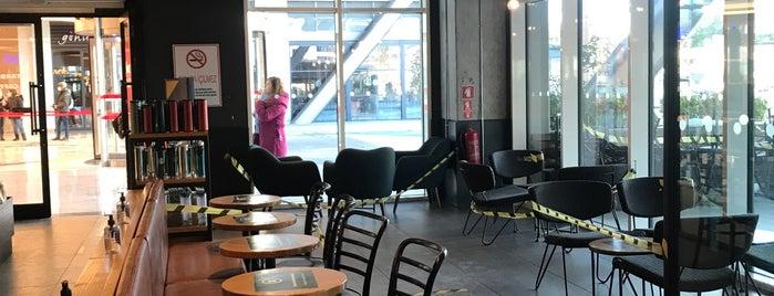 Starbucks is one of Trakya.