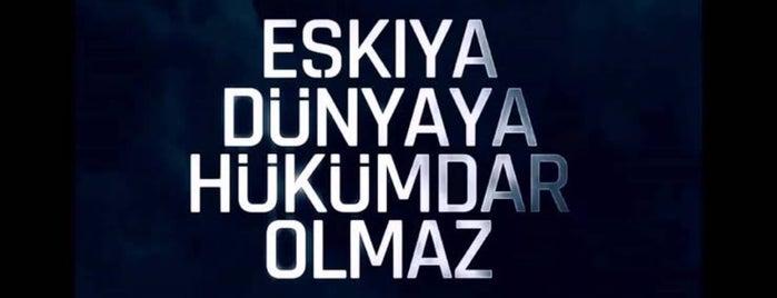 MayadRoom Ajans is one of DoĞukan Şahin.