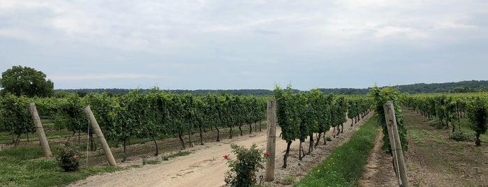 Kew Vineyards Estate Winery is one of Orte, die Jay gefallen.