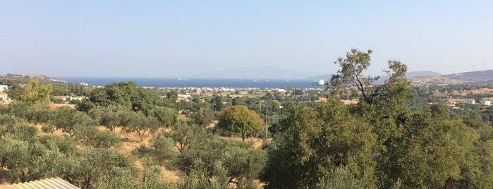 Kozbeyli Konağı is one of Orte, die Müjgannn gefallen.