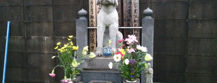 源心寺 is one of Find My Tokyo.