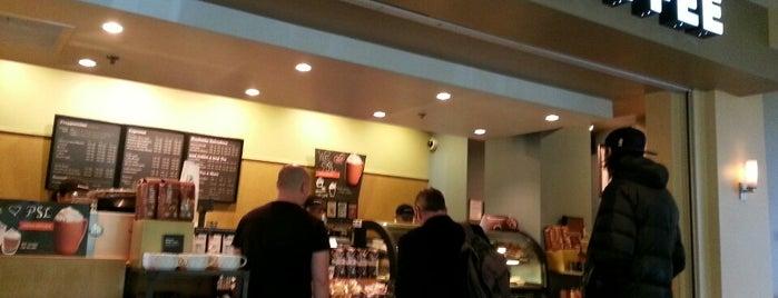 Starbucks is one of felicia 님이 좋아한 장소.