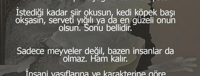 Beşevler Evren Kent Sitesi is one of Ahmet'in Beğendiği Mekanlar.