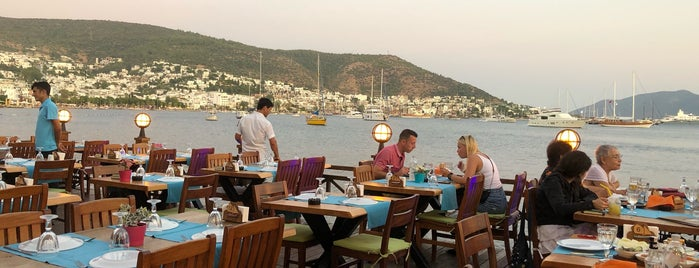 Fora Brasserie is one of Bodrum.