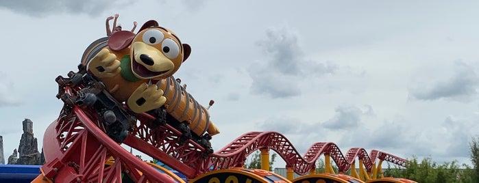 Slinky Dog Dash is one of Priscila'nın Beğendiği Mekanlar.