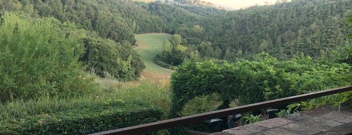 Bosca Della Spina is one of Gio 님이 좋아한 장소.