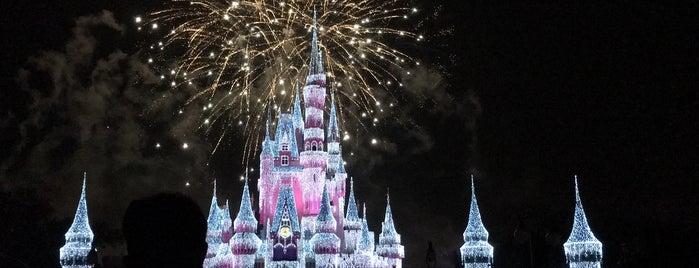 Magic Kingdom® Park is one of Lugares favoritos de Gio.