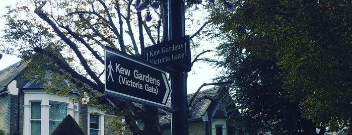 Kew Gardens Herbarium is one of Lugares favoritos de Gio.