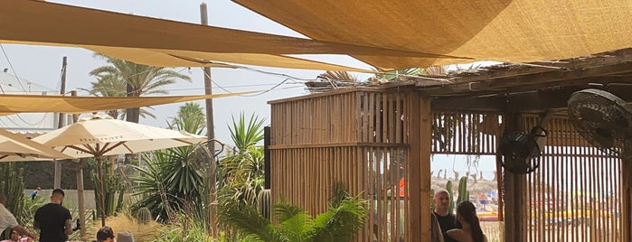 La Plage Casanis is one of Restaurantes Málaga 2.
