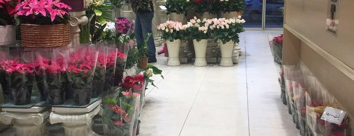 Bahram Flower Shop | گلفروشی بهرام is one of Lugares guardados de Hani.
