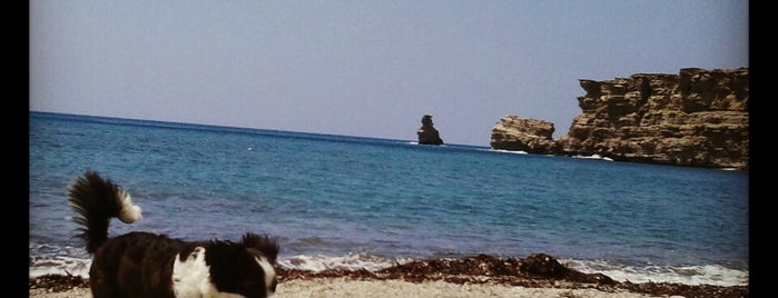 Akoumia Beach is one of Crete.