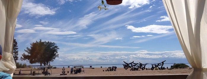 Кафе «На Ласковом пляже» is one of 3.